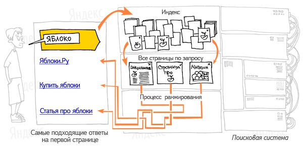 Академия Сайтов Санкт-Петербург